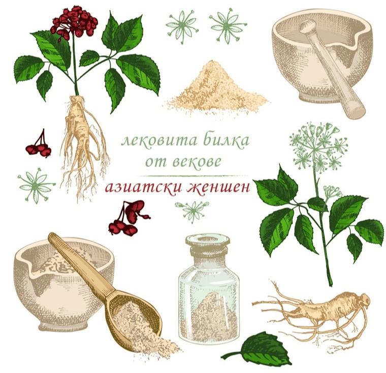 Азиатски женшен - лековита билка от векове