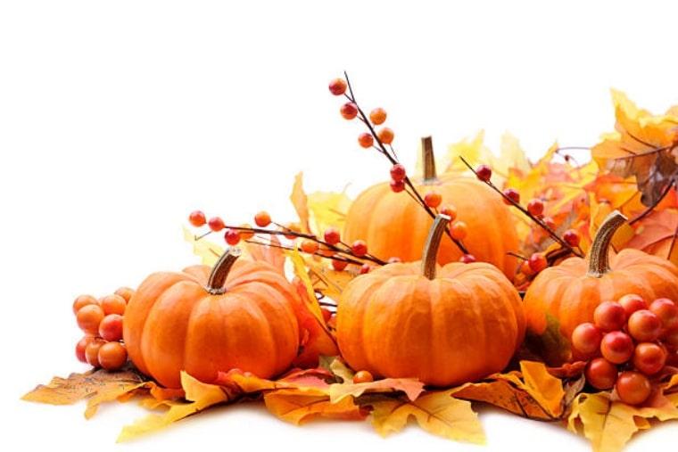 Есенно откровение и с любов за тиквата