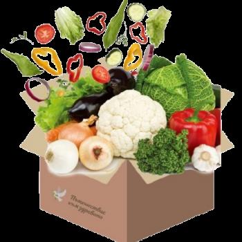 здравословни кутии с рецепти за вкъщи